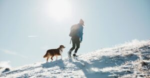 Top Tips for Getting Fit With Your Dog